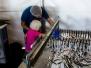 Zivsaimniecība